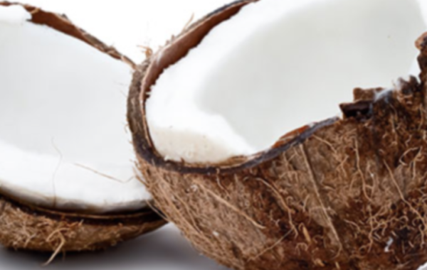 ON TREND PRODUCT: CONSCIOUS COCONUT – TRAVEL SIZE COCONUT OIL FOR THE FIRST TIME